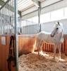 Утепление стойла для лошадей ппу полинор polynor
